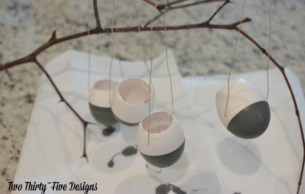 DIY Dipped Egg Shell Succulent Wall Garden