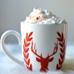 Peppermint Hot Chocolate Recipe by Two Thirty~Five Designs
