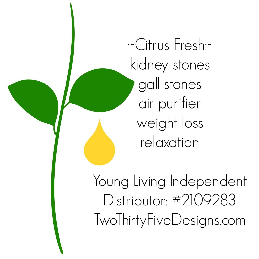 Citrus Fresh Essential Oil Uses by Two Thirty~Five Designs