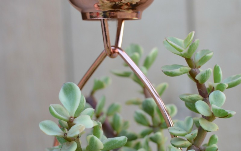 Copper Rain Chain Succulent Planter