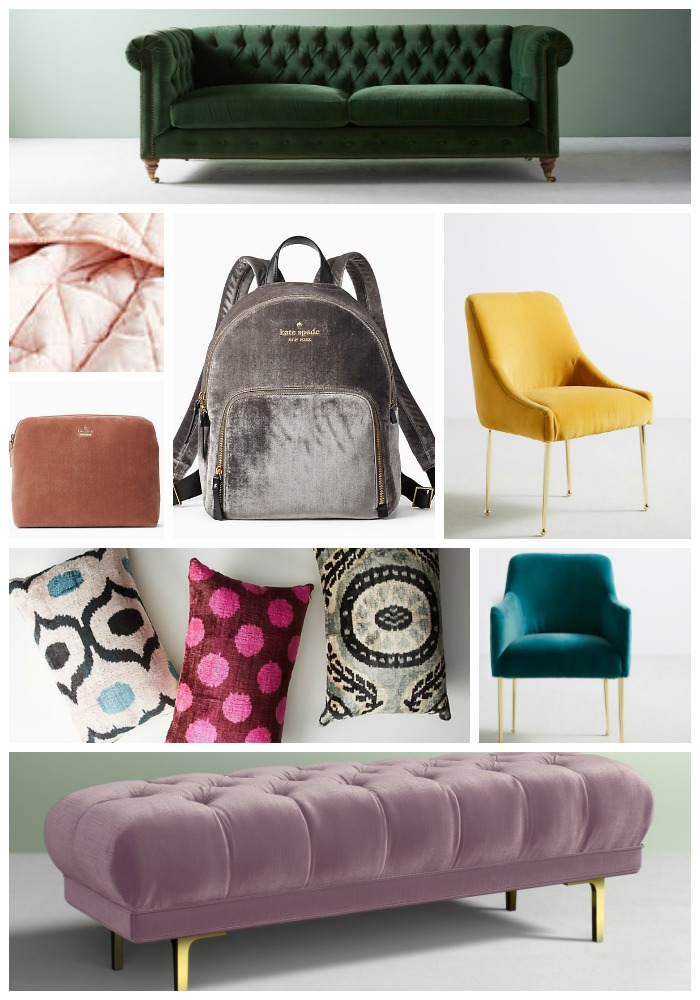 CurrentlyTrending - Bold Colored Velvet by Two Thirty Five Designs.